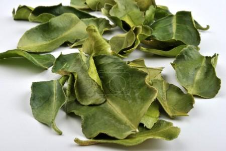 Organic kaffir lime leaves