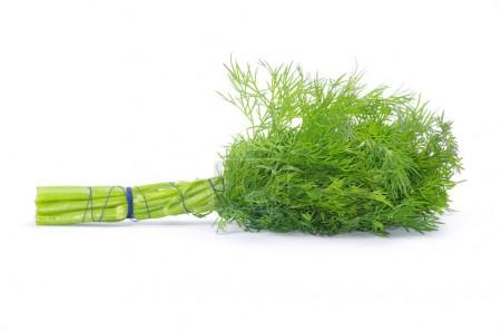 Dill on white