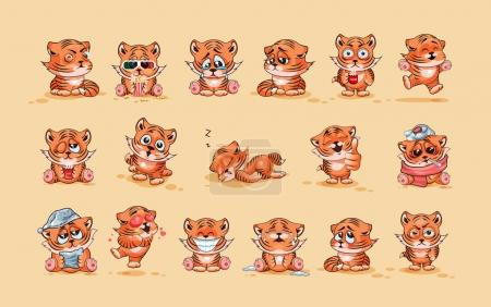 Set of Tiger cubs